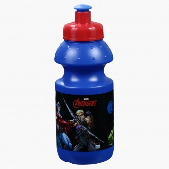 Avengers Printed Lunch Box and Water Bottle Set in Bag