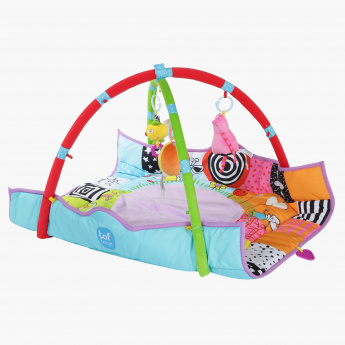 Taf Toys Playgym and Mats