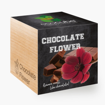 Feel Green Ecocube Chocolate Flower
