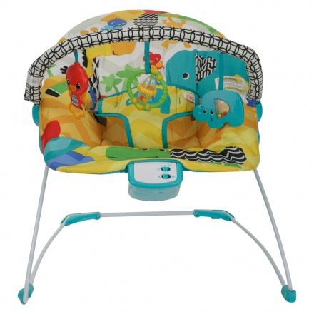 Bright Star Kids II Multi Colour Bouncer