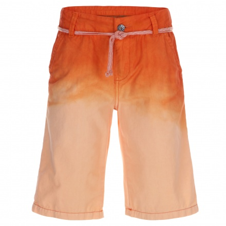 Posh Shaded Shorts