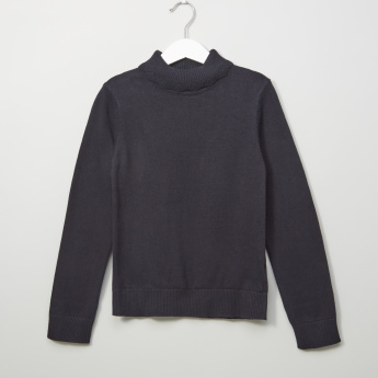 Posh Textured Turtleneck Long Sleeves Sweater