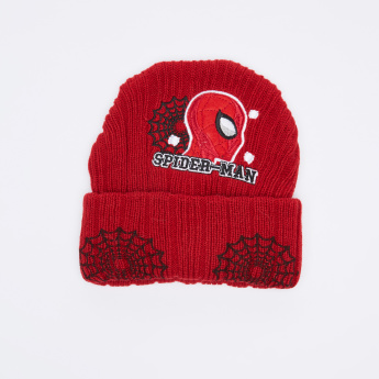 Spider-Man Embroidered Textured Beanie Cap